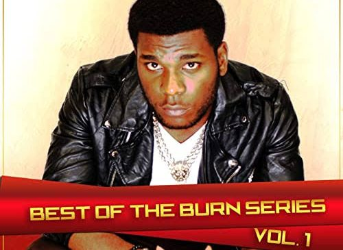 Burna Boy–Firewood MP3 Download